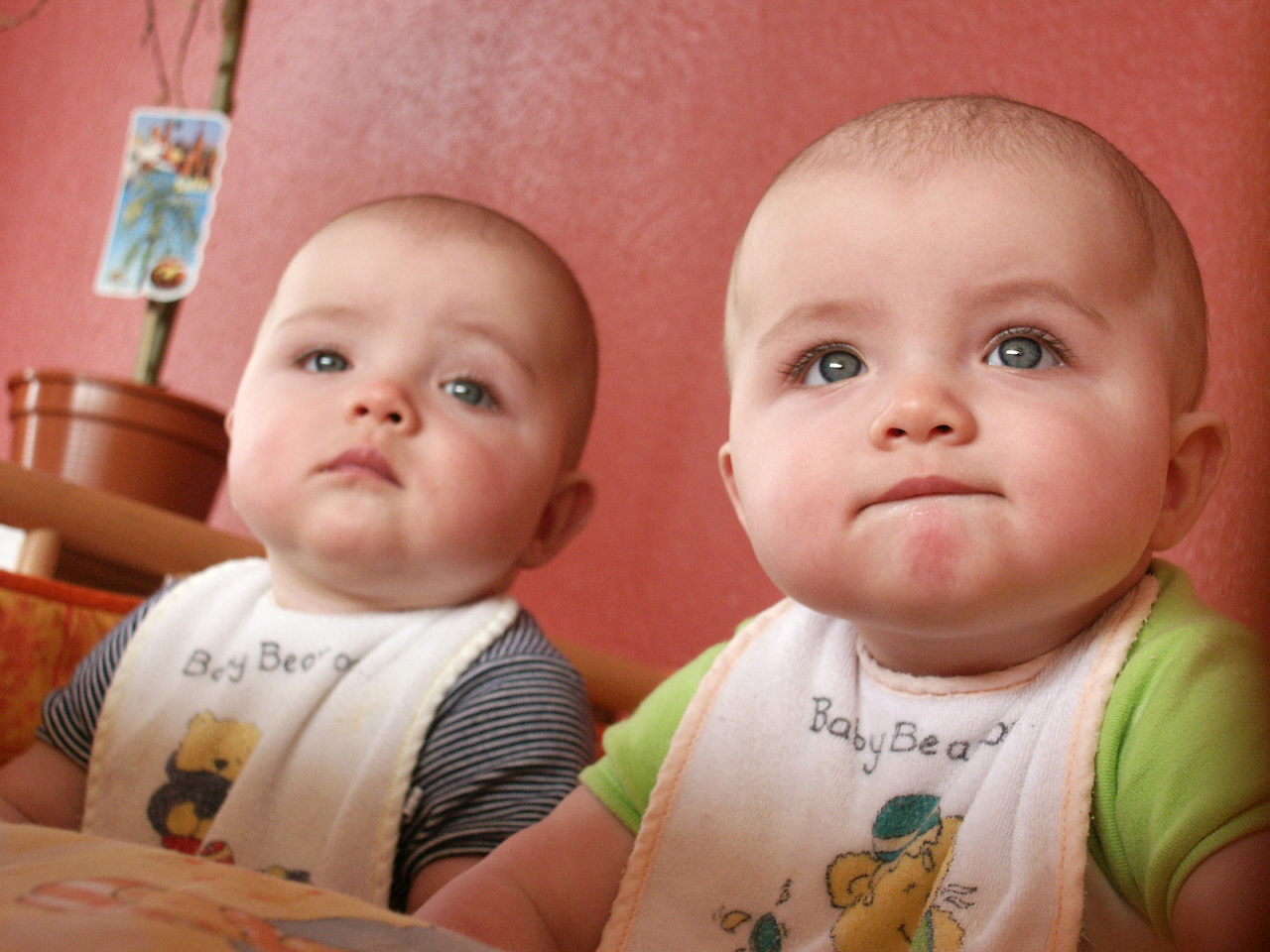 Minder tweelingen geboren