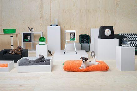Matchende meubels voor je huisdier, dat wil je toch?